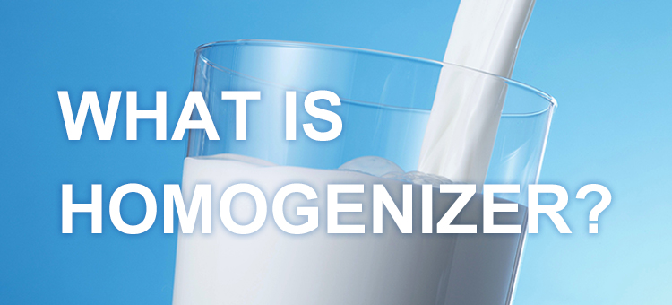 WHAT IS HOMOGENIZER?